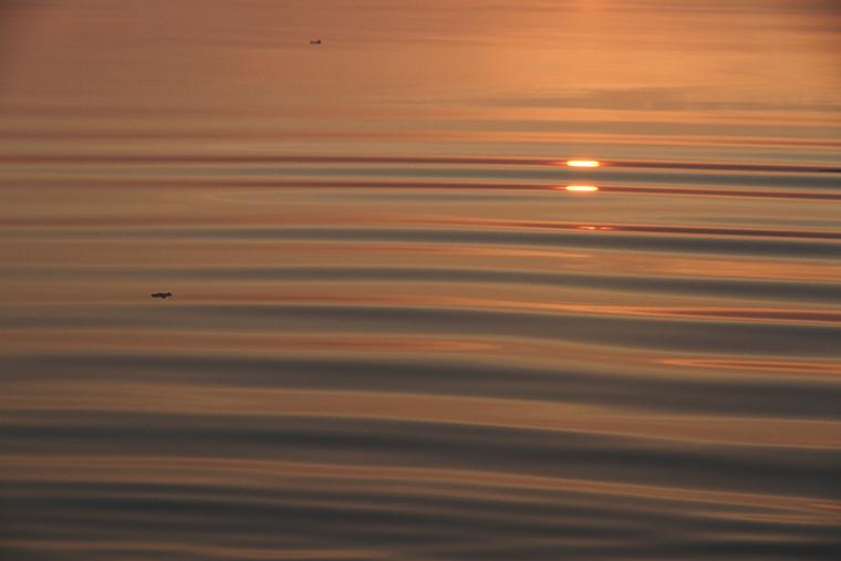 auringonlaskun aikaan vesi hunajaista