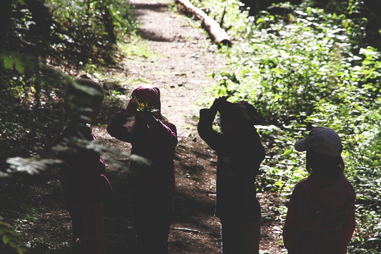 lapset metsassa hunajaista