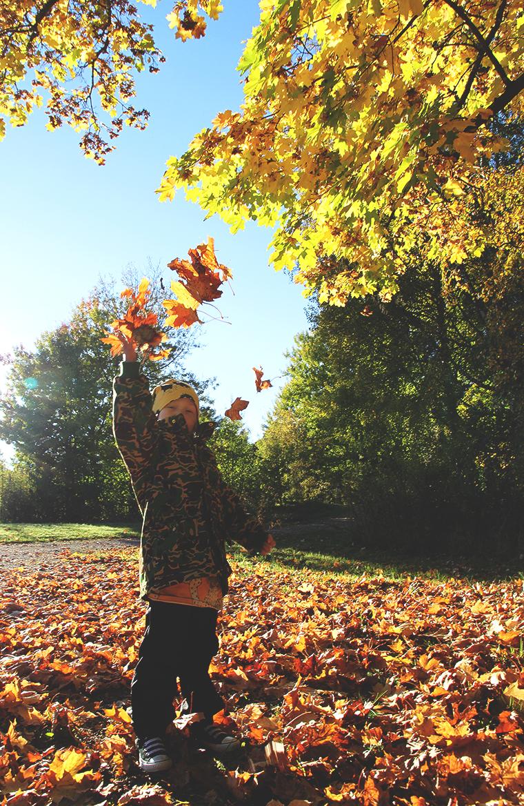 mini rodini siiri syksy fall autumn hunajaista