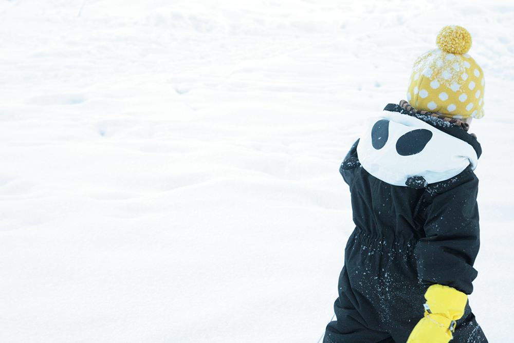 mini rodini panda siiri hunajaista fredriksson