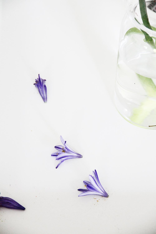 hunajaista lakastunut kukka