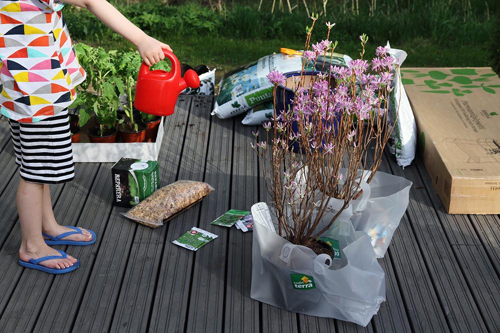 hunajaista takapiha terassi kekkila puutarha kasvit kevat kodin terra