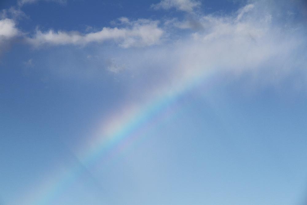 rainbow sateenkaari hunajaista kitee
