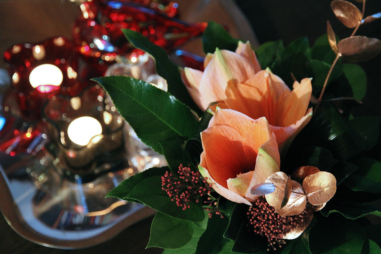 hunajaista joulukukat
