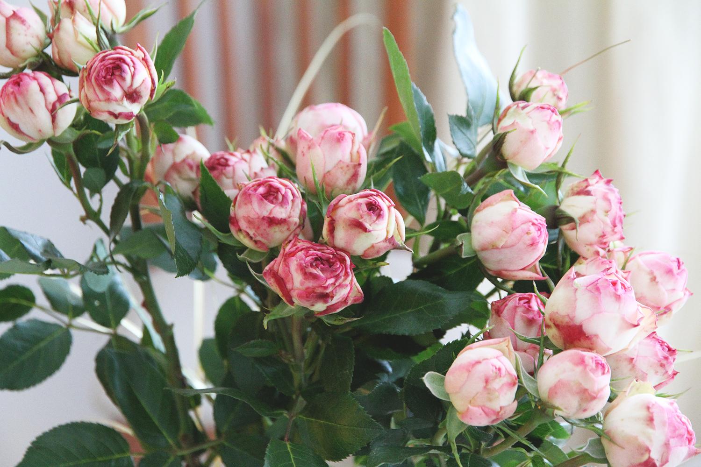 hunajaista ruusut kaisan kukka
