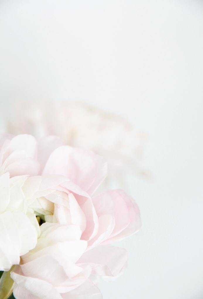 hunajaista sisustusblogi phography riikka timonen interor flowers leikkokukat pioni