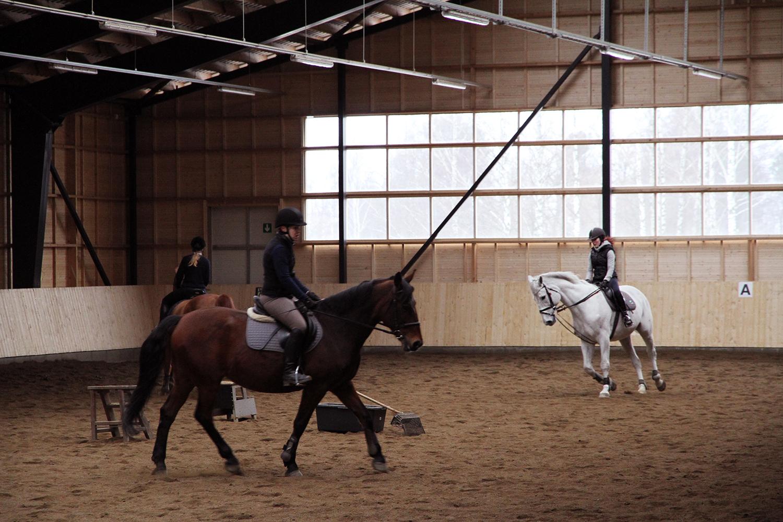 hunajaista aulangon ratsastuskoulu maneesi