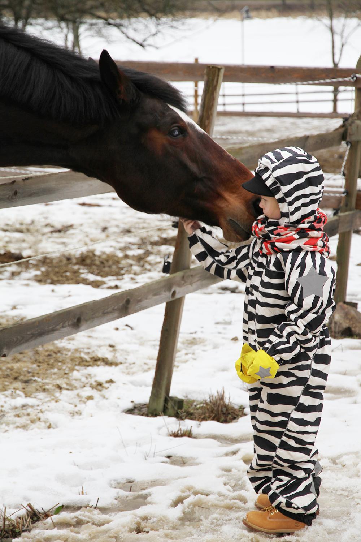 hunajaista aulangon ratsastuskoulu siiri